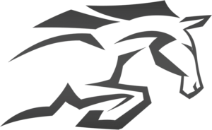 Stallion Men's Health Logo - Horse